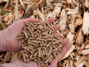 Benefits of Making Wood Pellets
